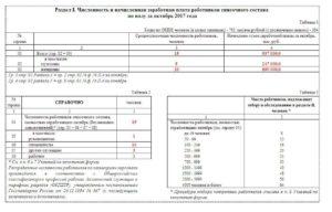 Пример заполнения формы 1 т проф. Законодательная база российской федерации