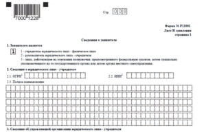 Программа для заполнения р11001. Образец заполнения Р11001 с двумя учредителями