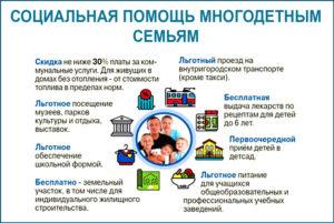 Новая программа помощь многодетным семьям. Льготное медицинское обслуживание, питание и бытовое обеспечение