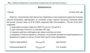 Доверенность в трудовую инспекцию. Скачать доверенность на право подписи документов в трудовую инспекцию