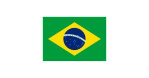 Девиза на флаге бразилии. Флаг Бразилии