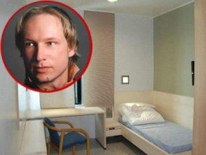 Норвежская тюрьма брейвика. Как сидится в тюрьме Андресу Брейвику — самому зловещему убийце современности
