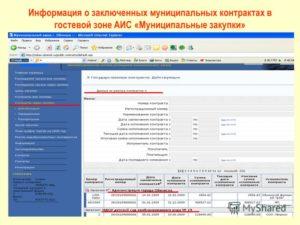 Информация о заключенных государственных контрактах. Все о номерах в закупках