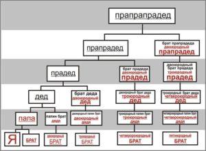 Сводные или родные.  Родственники – родные, двоюродные и сродные