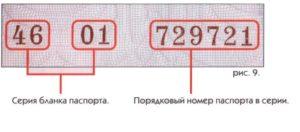 Где найти серию и номер паспорта рф. Пример серии и номера паспорта рф