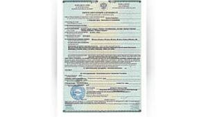 Фитосанитарный сертификат кто выдает. Карантинный сертификат