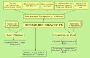 Высшие представительные органы государственной власти. Высший представительный и законодательный орган РФ