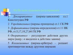 Нормы дефиниции в конституции рф. Нормы и принципы конституции