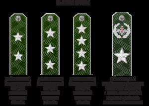 Форма гражданских служащих министерства обороны. Классный чин