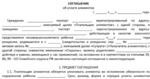 Соглашение о единовременной выплате алиментов образец. Соглашение об уплате алиментов родителям