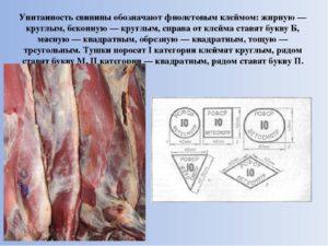 Клеймение мяса свинины. Классификация мяса