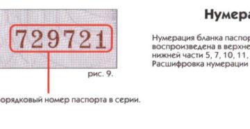 Адрес по серии и номеру паспорта. Как можно узнать владельца по его номеру паспорта